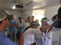 Odontologia_Equina_(3)